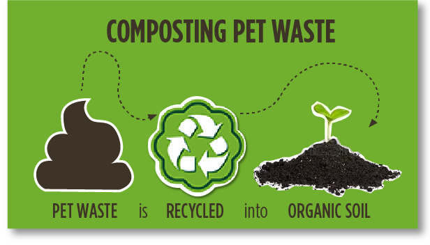 Infographic of the Composting Pet Waste Process